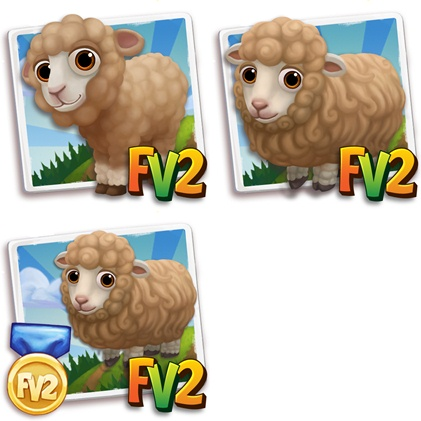 Brown Dorset Sheep