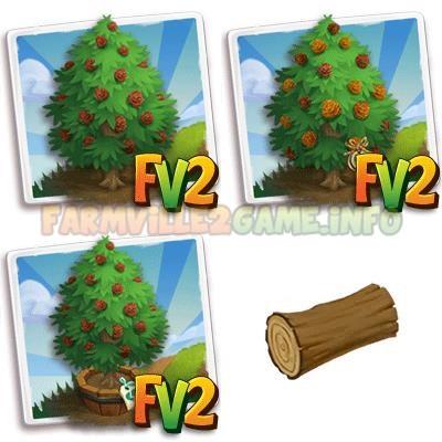Deodar Wood Tree