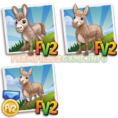 Ivory Norman Donkey