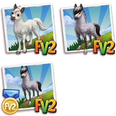 Grey Fjord Horse