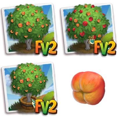 Doughnut Peach Tree