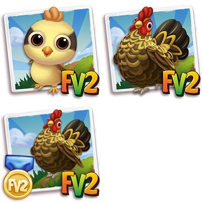 Gold Brindled Chicken