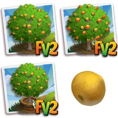 Monkey Orange Tree