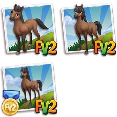 Catria Horse
