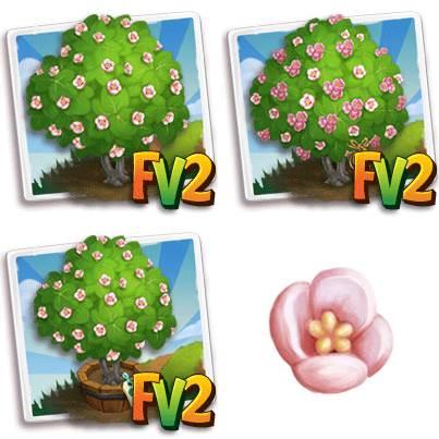 Pink Wild Pear Tree