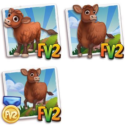 Barzona Mini Cow