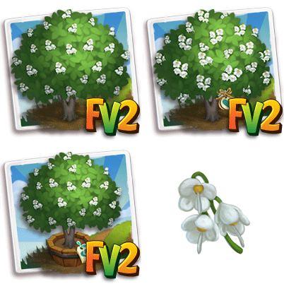 Mountain Silverbell Tree
