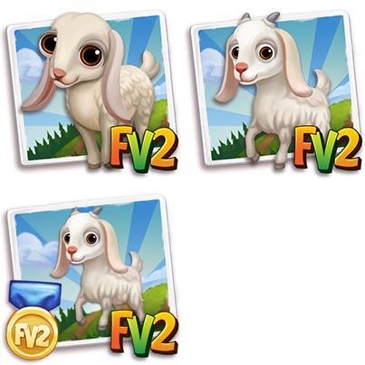 White Damascus Goat