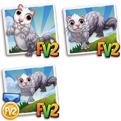 Silver Panda Ferret