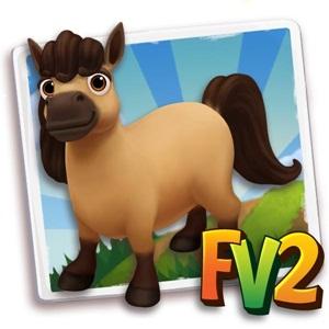 Buckskin Mini Horse