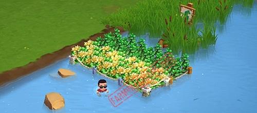 Water fields row