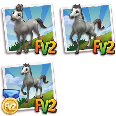 Gray Holsteiner Horse
