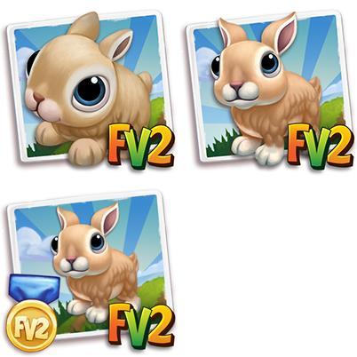 Sussex Rabbit