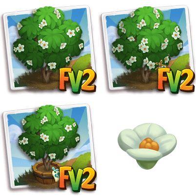 Franklin Tree