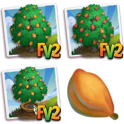 Okari Nut Tree