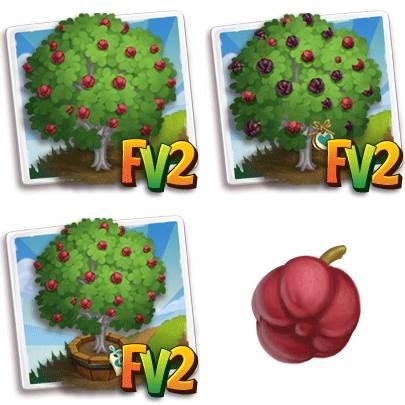 Burdekin Plum Tree