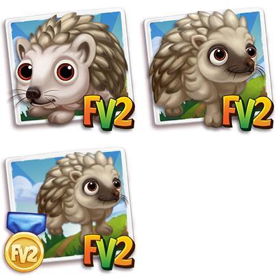 Brown Amur Hedgehog