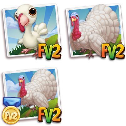 Midget White Turkey