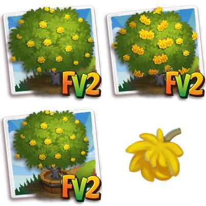Frywood Tree